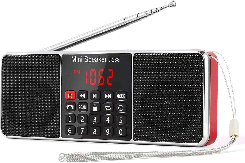 L-288 Radio portátil FM Am con Altavoz estéreo Bluetooth, Temporizador de Apagado, estación de Bloqueo, Tarjeta USB y TF y Reproductor de MP3 AUX, por ...