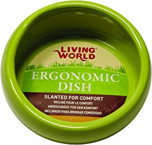 Living World Ceramic Ergonomic Pet Dish 120 ml Capacity, Green Small