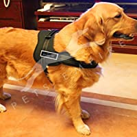 Pets Empire Adjustable Pet Body Padded Nylon Vest Harness with Reflective Stitching and Velcro Patches for Dog Walking, Training, XL