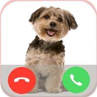 Dog Call