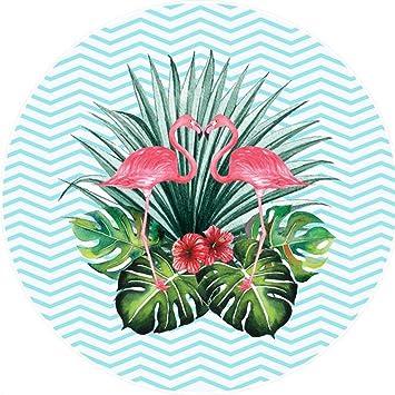 ED-Lumos Toalla de Playa Manta para Playa o Picnic Microfibra Poliéster Gigante 150cm x 150cm Forma Flamenco Color Verde Claro y Rosa: Amazon.es: Hogar