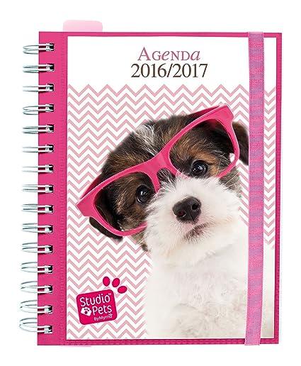 Grupo Erik Editores Studio Pets Dog - Agenda escolar sv 2016/2017, 14.8 x 21 cm