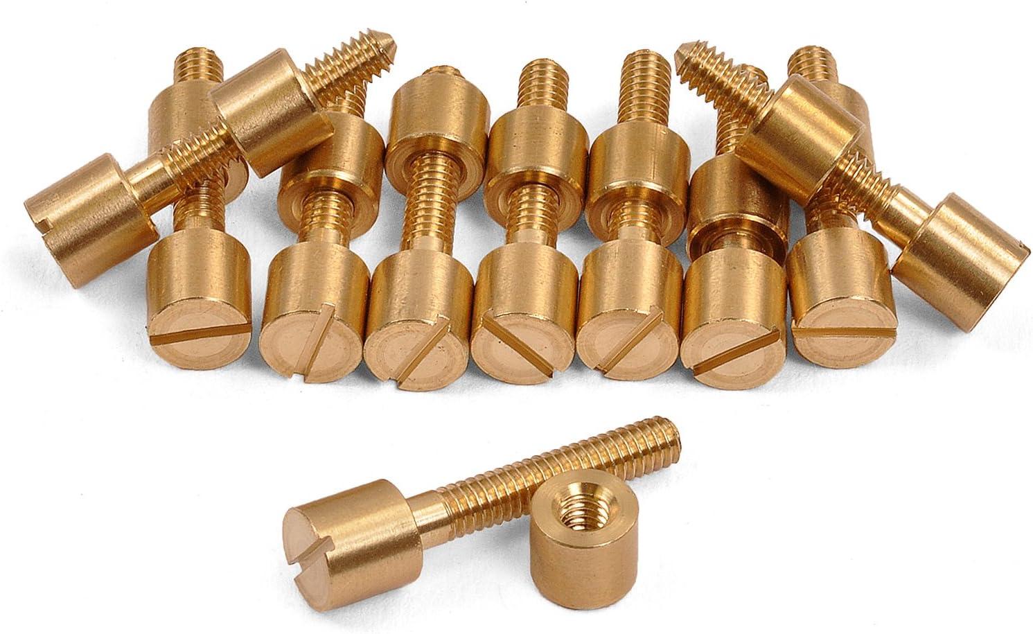 5//16 Diameter Head 10 Pack of Brass Screw Fasteners 600B