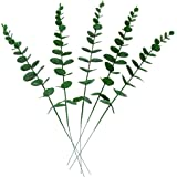 Mandy's 5 Pcs Artificial Green Eucalyptus Leaves with Individual Stem for Flower Bouquet Centerpiece Home Decorations