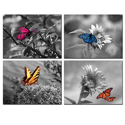 2b75af6ac Biuteawal - 4 Panel Art Wall Decor Color Butterfly on Sunflower Picture  Black and White Wall
