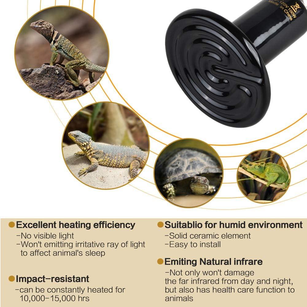 QUNNIE Reptile Heat Light ampliamente utilizada en Pet Brooder Coop Chicken Lizard Turtle Snake Aquarium l/ámpara para reptiles