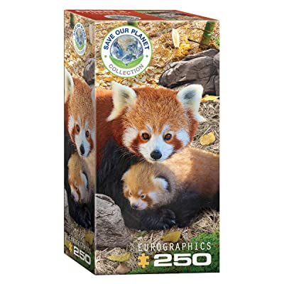 EuroGraphics Red Pandas 250-Piece Puzzle: Toys & Games