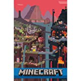 """Amazon Price History for:Minecraft, Cube, 22"""" x 34"""" Wall Posters"""