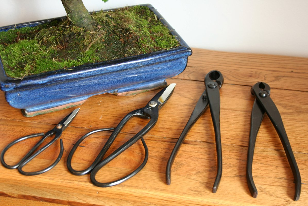 4 Piece Bonsai Tree Tool Set