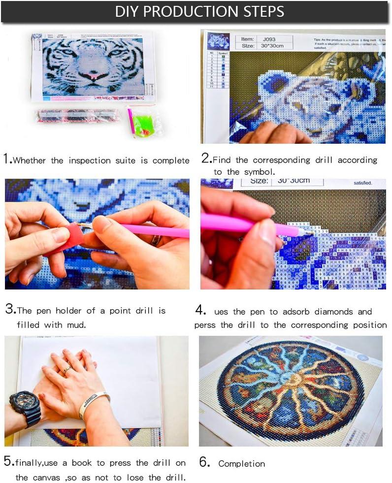 loisirs cr/éatifs impressions de d/éfilement avec strass en cristal 40x60 cm coffret cadeau Kit de peinture en diamant pour adultes 5D pour travaux manuels art et loisirs cr/éatifs