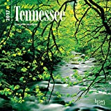 Tennessee, Wild & Scenic - 2017 - USA 7 Inch x 7 Inch Hanging Mini Wall Photographic American State Nature Planner Calendar