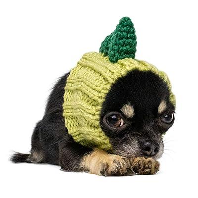 Zoo Snoods Dinosaur Dog Costume