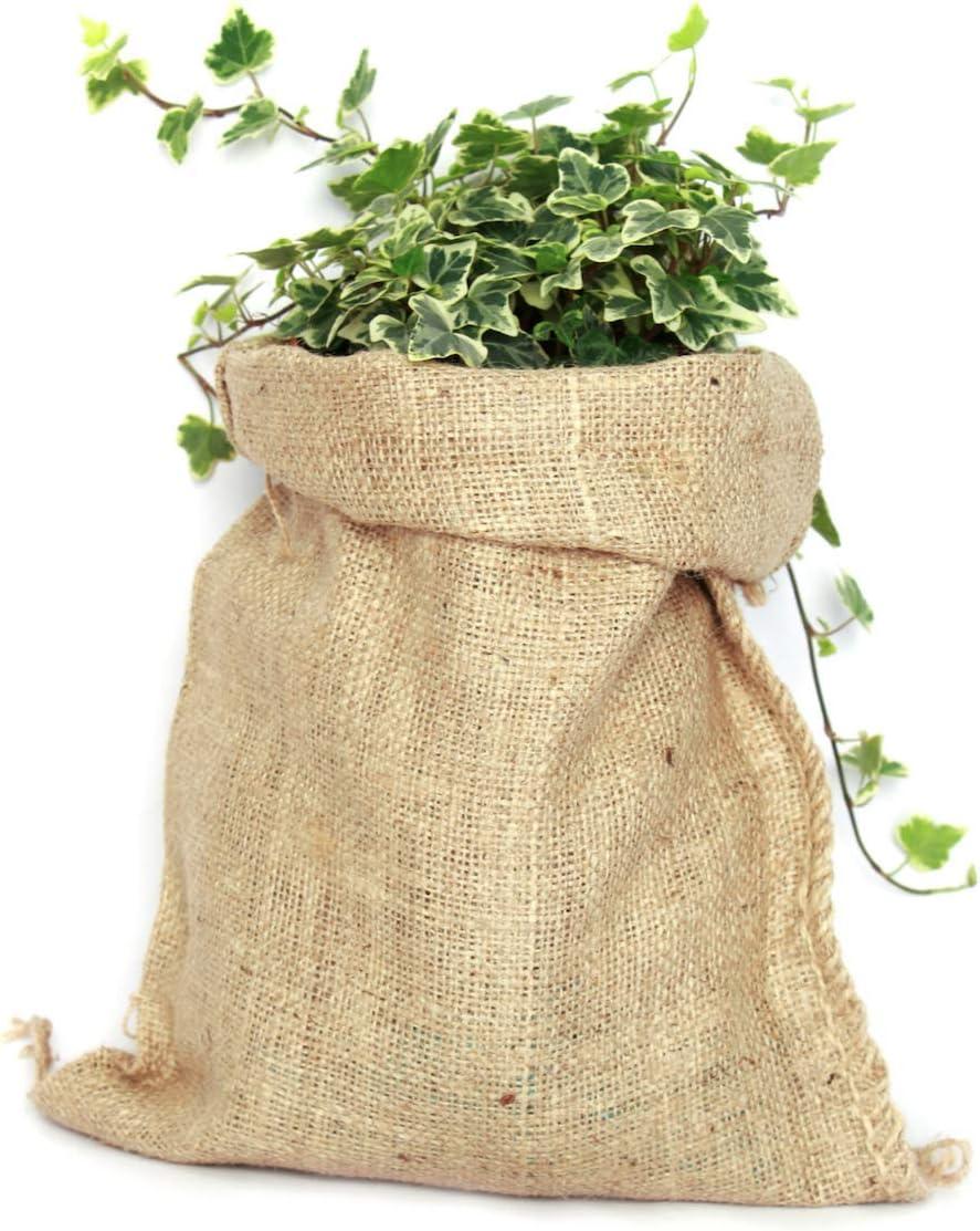 TBG Saco de Yute 100% Natural - Pack 3 Bolsas Ecológicas. Ideal para Decoración de Cocina, Jardín, Huerto Urbano y Fiestas Vintage. Bolso Ecológico para Verduras, Organizador Rústico (26x48cm)
