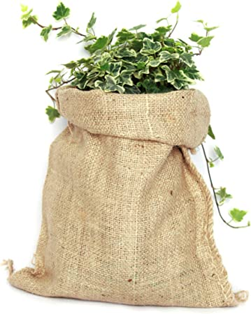 TBG Saco de Yute 100% Natural - Pack 3 Bolsas Ecológicas. Ideal ...