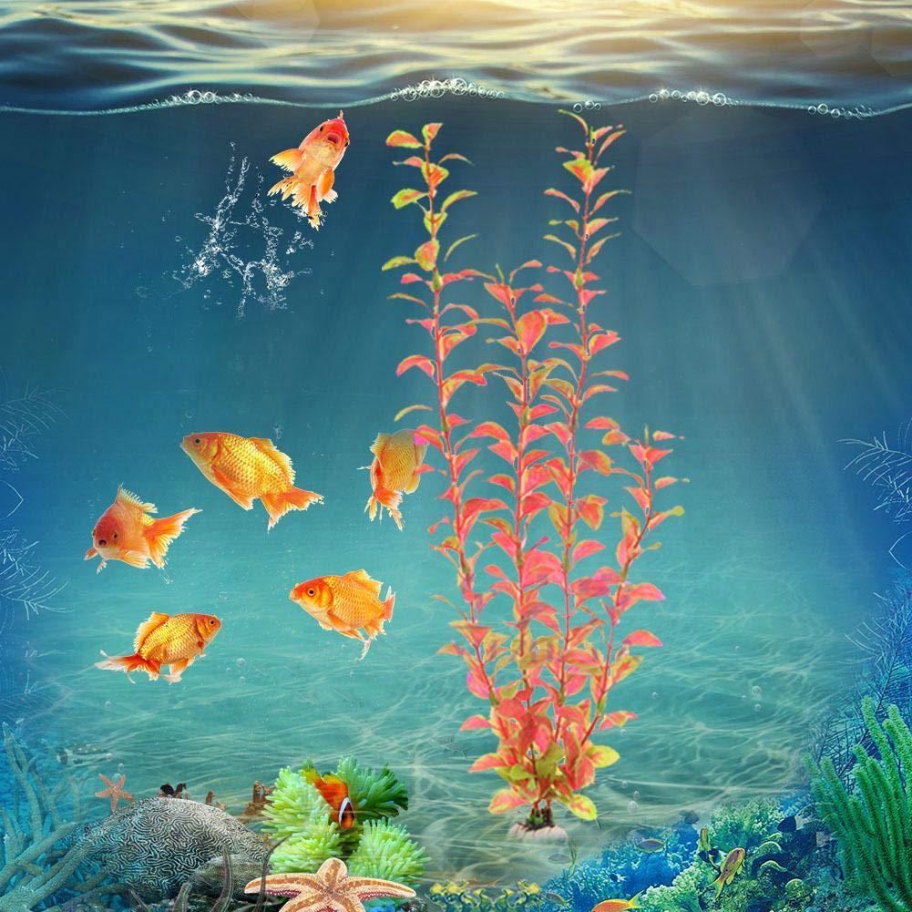 Plantas acuáticas para acuarios, plantas plásticas Plantas para acuarios Decoración de tanques de peces Plástico Agua simulada Hierba: Amazon.es: Bricolaje ...