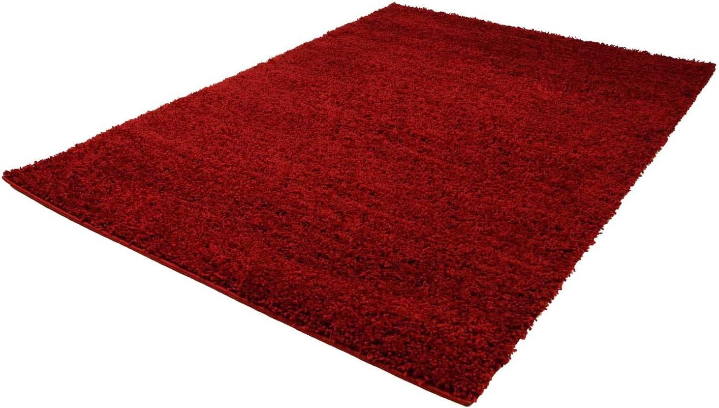 200 cm x 200 cm 200 x 200 cm Quadratisch Gr/ö/ße Carpet city ayshaggy Shaggy Teppich Hochflor Langflor Einfarbig Uni Creme Weich Flauschig Wohnzimmer