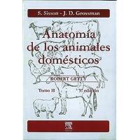 Anatomía de los animales domésticos. Tomo II