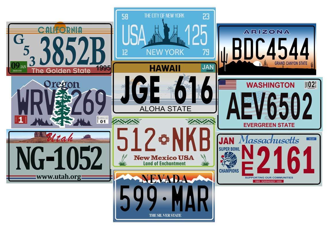 USA REPLICA Set of 10 US LICENCE METAL PLATES