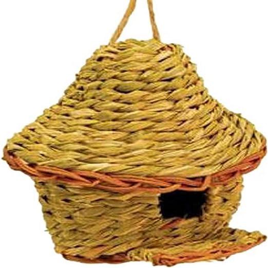Tierra jardín N1019 (Junco Marino, diseño de caseta de pájaro de alta, color marrón: Amazon.es: Jardín
