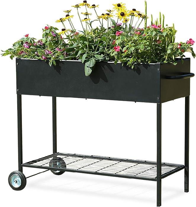 Top 10 Garden Vegetable Box