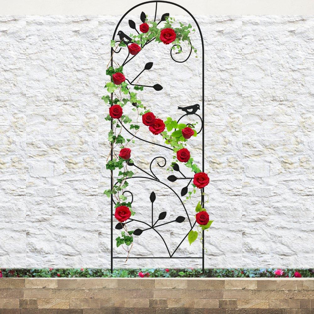 Best cucumber trellis for garden | Amazon.com
