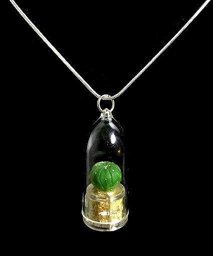 Amazon.com: Live Green Star Cactus Collar Wearable miniatura ...