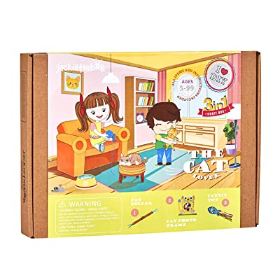 jackinthebox Cat Themed Craft kit for Kids | Great Gift for Cat Owners, Cat Moms, Cat Lovers | Make 3 Beautiful Craft Projects for Your Cat (3-in-1): Toys & Games
