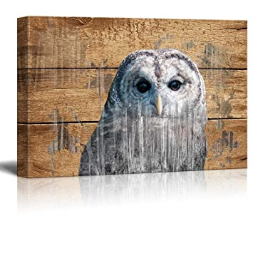 Rustic Canvas Wall Art.Wall26 Double Exposure Rustic Canvas Wall Art An Owl Giclee Print Modern Wall Decor Stretched Gallery Wrap Ready To Hang Home Decoration