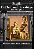 Reihe «Ein Blick durch die Vorhänge» mit 200 erotischen Geschichten. Sammelband Nr. 1 (Erzählungen 1-25): Illustrierte Sexgeschichten, die Ihre erotischen Fantasien anregen werden
