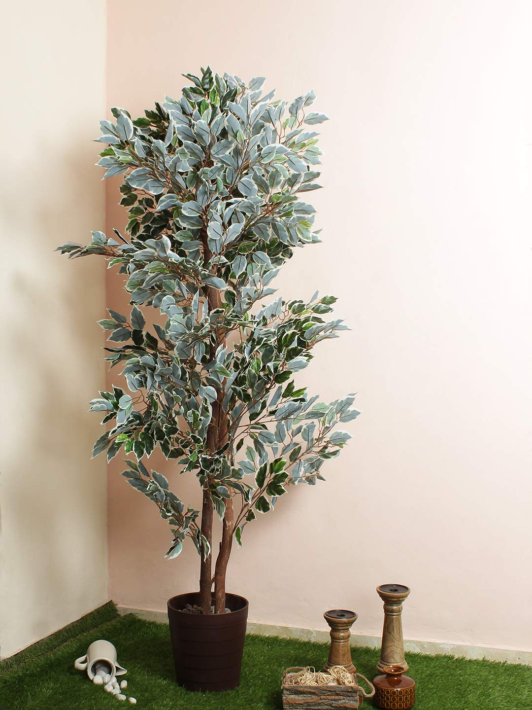 Buy Fourwalls Artificial Variegated Ficus Tree Ithout Pot For Home And Office Decoration 5 4 Feet Green White Online At Low Prices In India Amazon In