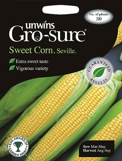 Unwins Pictorial paquetes – Sweet maíz Sevilla F1 – 30 semillas