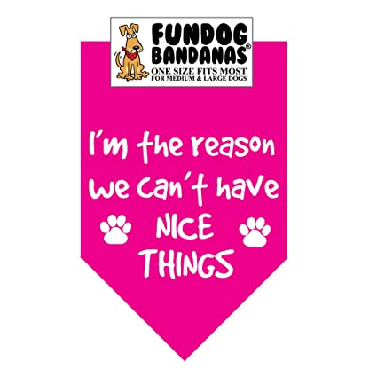 5c0d64694c9 Amazon.com : I'm the Reason we Can't Have Nice Things Dog Bandana ...