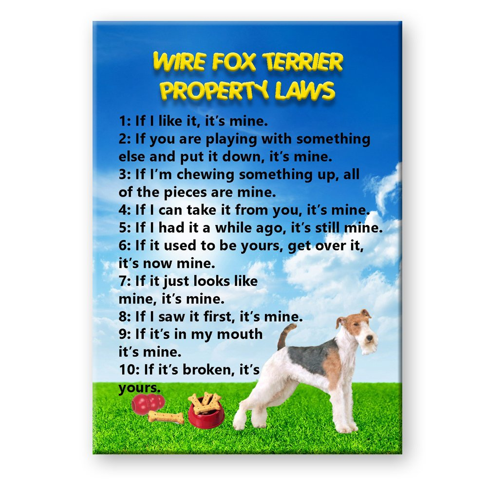 Wire Fox Terrier Property Laws Fridge Magnet No 2 Funny: Amazon.co ...