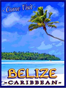 TYmall Metal Sign Wall Plaque 8X12 Inch Belize Central America Caribbean Sea Beach Ocean Travel Advertisement Retro Metal Poster Signs Decor House Home Tin Signs