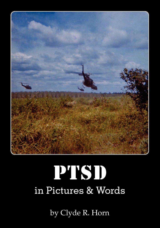 Download PTSD in Pictures & Words ebook