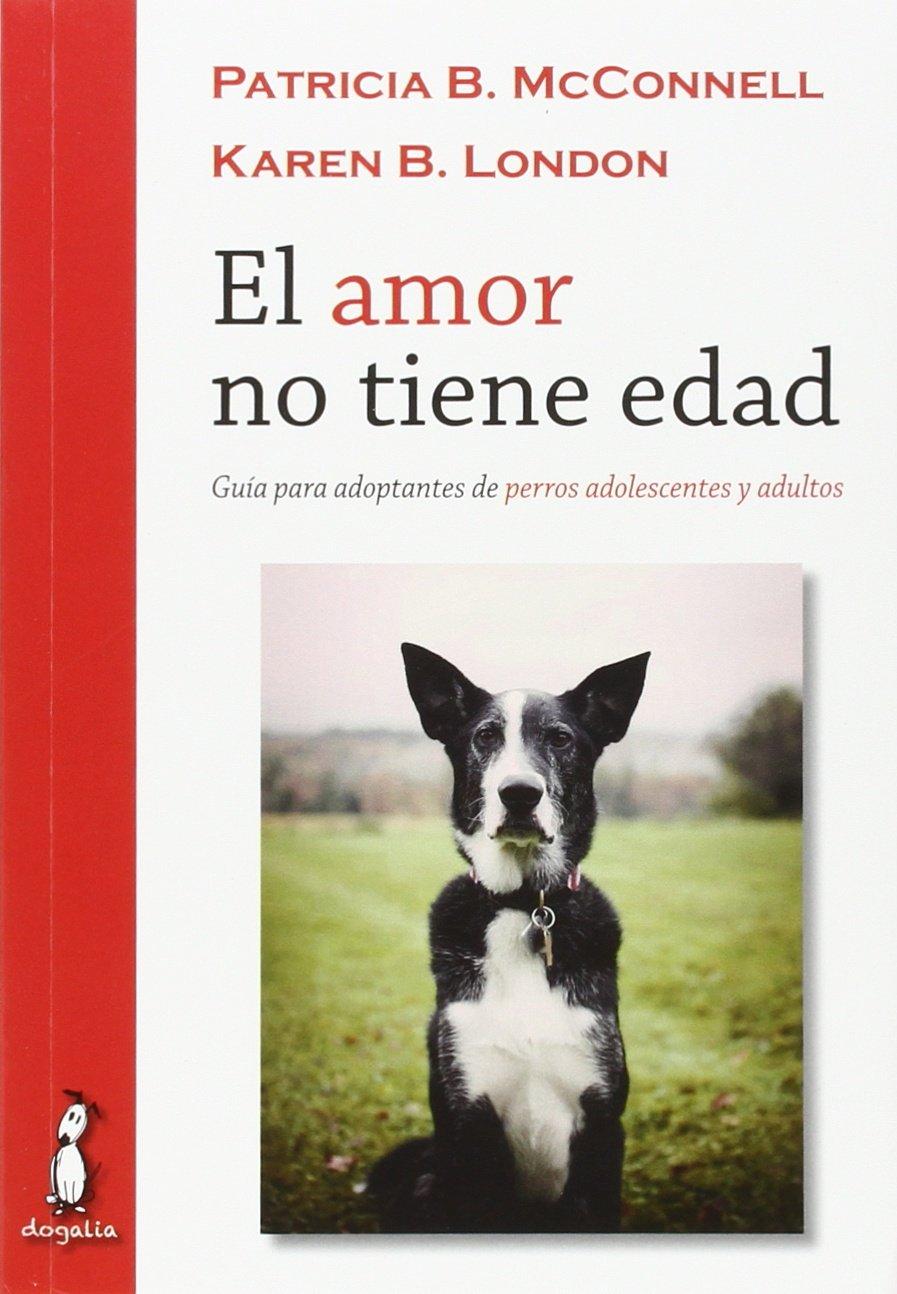 El amor no tiene edad : guía para adoptantes de perros adolescentes y adultos: Amazon.es: A.A.V.V.: Libros