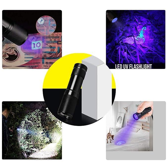LABOTA 6 Paquete Linterna ultravioleta, Led Linterna UV flashlight 9 LED, linterna para mascotas, detector de orina de prueba rápida, enuresis, ...
