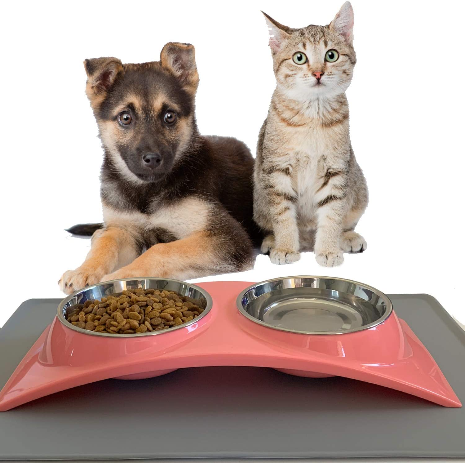 ZEXPRO Double Pet Food Bowls - Dog Bowls & Cat Bowls Made with Premium Stainless - Raised Feeding Stand with Non-Slip Silicon Mats Made with PP - Perfect for Cats and Small Dogs