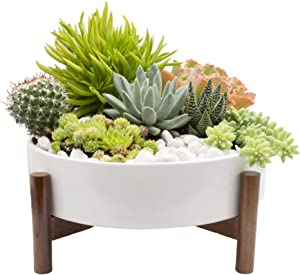 Joda 10 Inch Mid Century Round Succulent Planter with Stand, Succulent Pots with Drainage, Cactus Planter, Dining Table Centerpiece (Plants NOT Included)