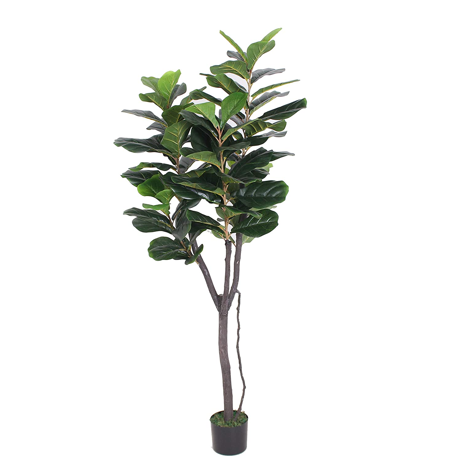 5 feet Super Quality Green AMERIQUE 28113 Gorgeous /& Dense 5 Fiddle Leaf Fig Tree Artificial Silk Plant with UV Protection with Nursery Plastic Pot Feel Real Technology