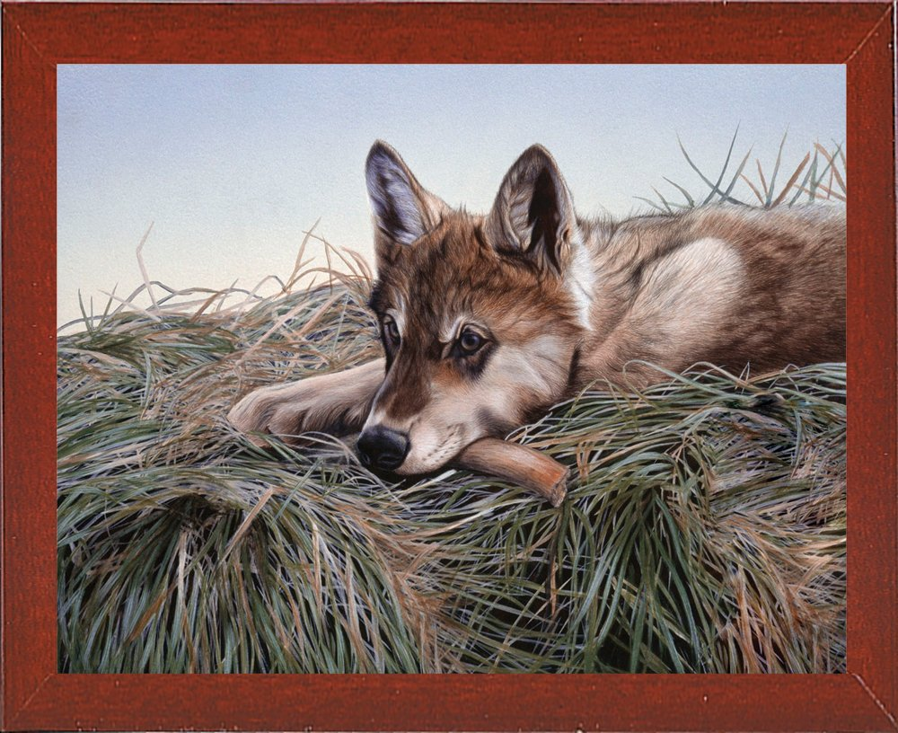 Frame USA Chewing On It-RUSFRE6079 29.75x38.5 by Rusty Frentner in a Affordable Red Mahogany Medium Print 29.75x38.5