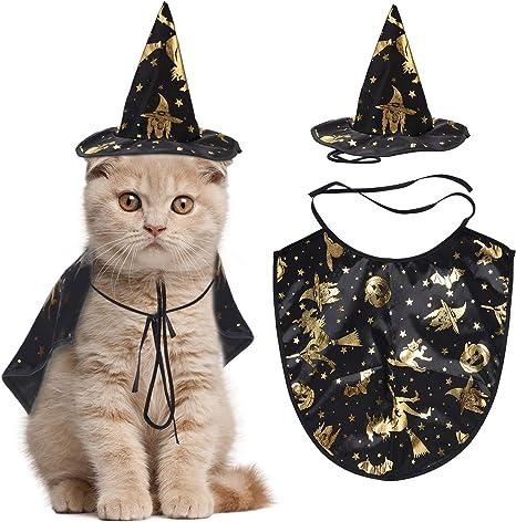 Legendog Disfraz de Halloween de Gato, Capa de Mago con Gorro ...