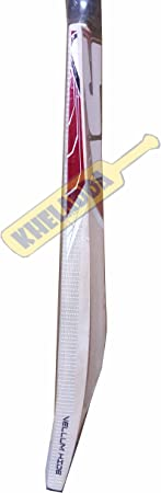 SF Vellum Hide Kashmir Willow Cricket Bat
