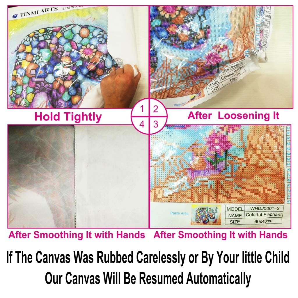 TINMI ARTS-5D Diamond Painting Kits for Adults Full Round Mosaic Cross Stitch Kits Embroidery Kits Home Wall D/écor 12x18 Petals