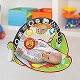 Pukido Oyuncaklı Bebek Oyun Halısı