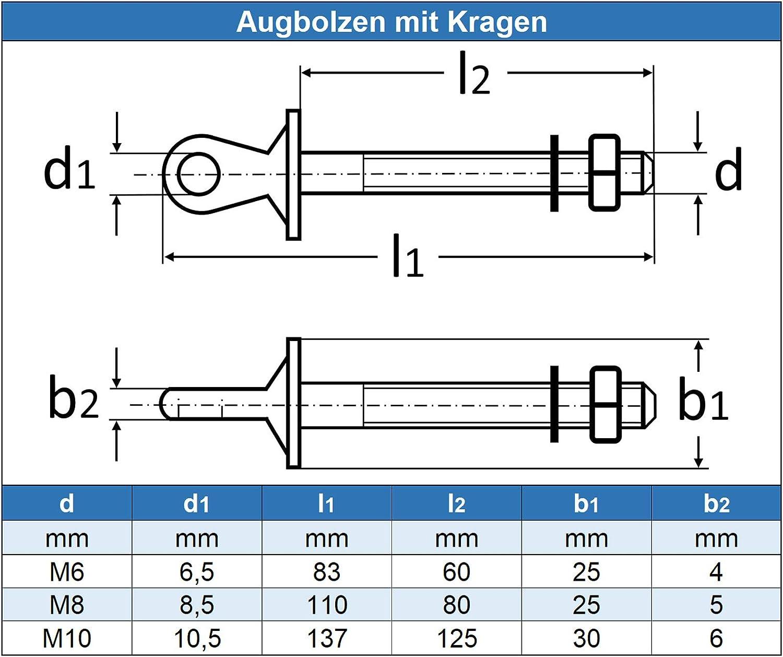 Edelstahl A4 V4A rostfrei M6 Augbolzen mit Kragen Ringschraube 5 St/ück - /Ösenschrauben mit metrischem Gewinde Eisenwaren2000