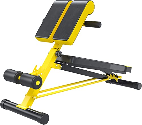 Soozier Folding Adjustable Hyper Extension Bench Dumbbell Weight Ab Multifunction Workout Pre