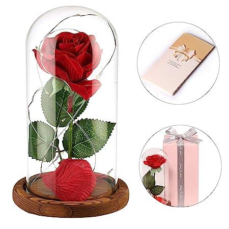 Anaoo Rosa Bella y la Bestia Regalo Navidad para Mujeres, Madres, Novia, San Valentin, cumpleaños, Boda, Aniversario, con una cúpula de Cristal sobre ...