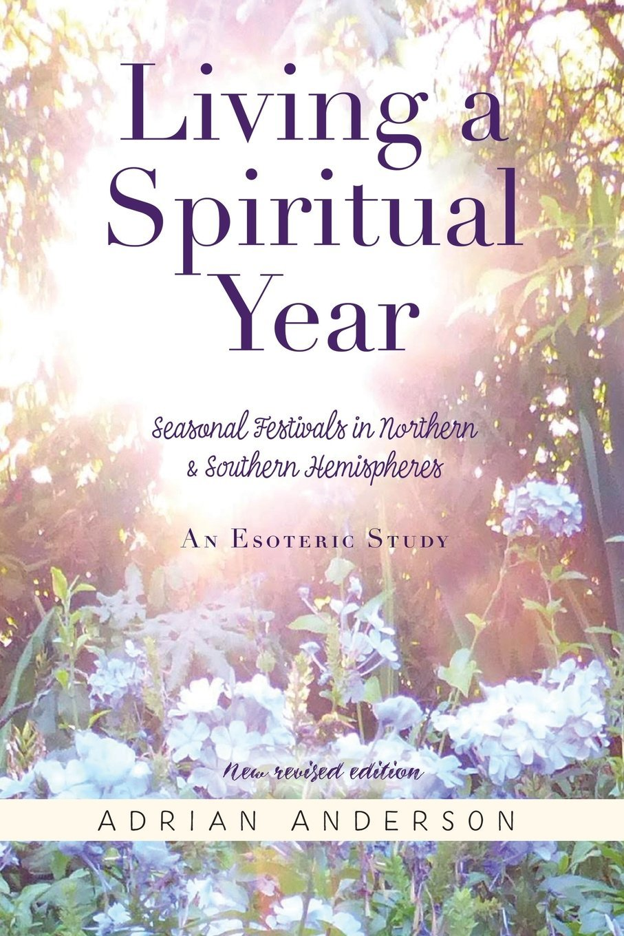 Living a Spiritual Year: Adrian Anderson: 9780646102856: Religious ...