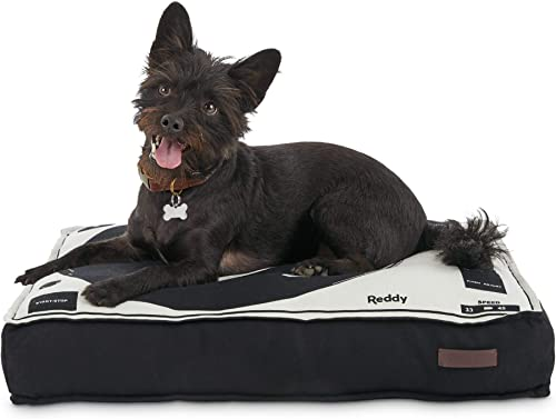 Reddy Record Player Dog Bed